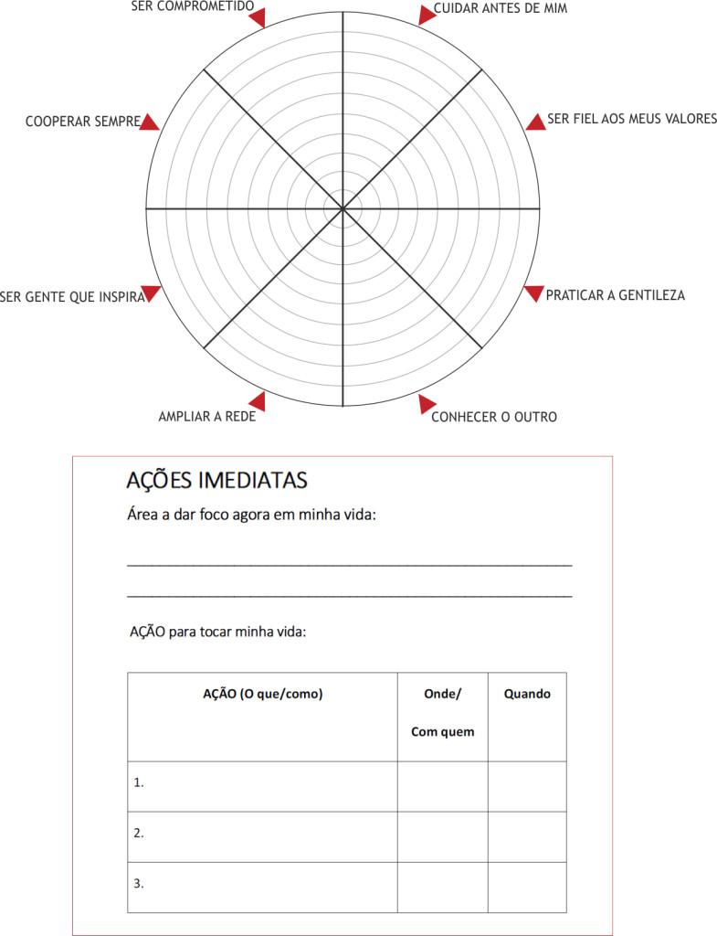 roda-da-humanizacao+tabela
